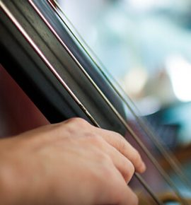 The Musician's Way: Practice, Performance and Wellness